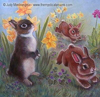 Bunnies Playing In Daffodiles